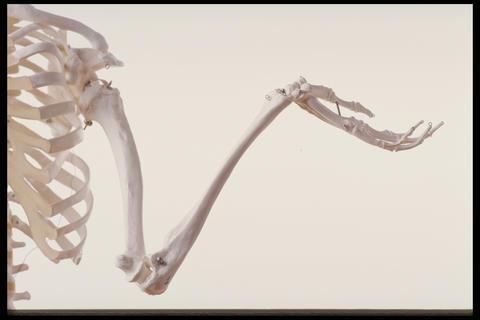 Nitroglycerin bra för ditt skelett