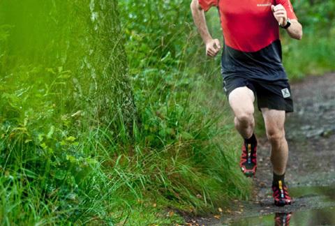 Vad är skillnaden? Terrängskor vs. traditionella löparskor
