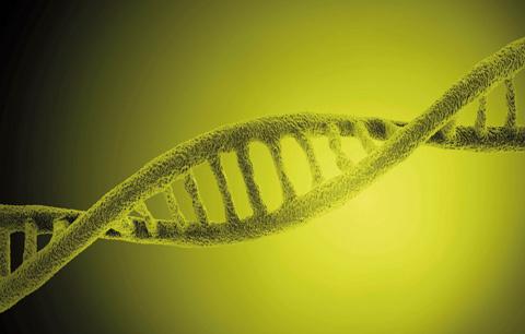 Så mycket kan dina gener påverka träningsresultatet. Du kommer bli förvånad!