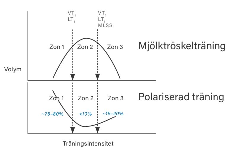 Polariserad träning
