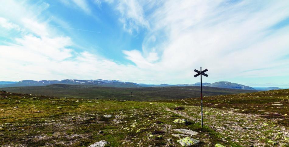 Sju grymma trail-leder