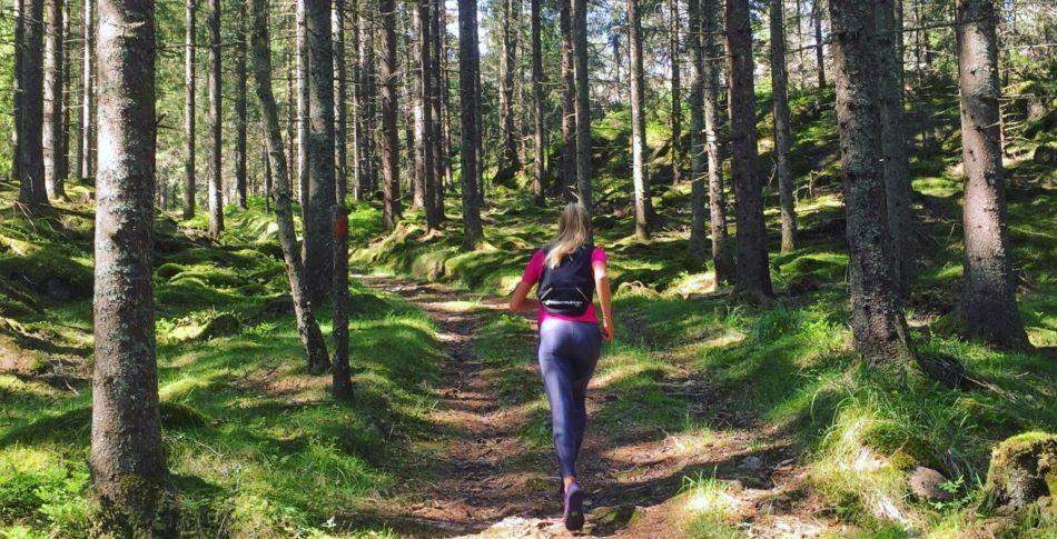 Löparäventyret i Dalsland