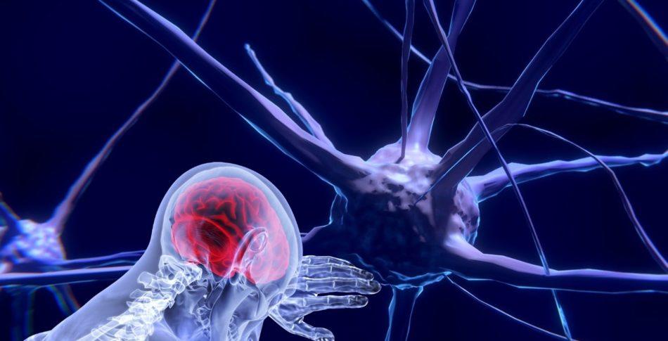 Löpning förändrar din hjärna och dina tankar