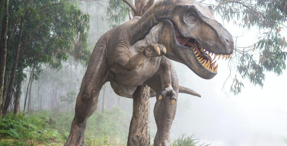 Du springer i alla fall snabbare än en Tyrannosaurus Rex